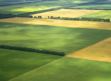 Земли под ИЖС, поселения, цены